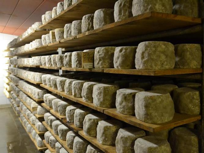 Fromages et Traditions au Grand Bornand